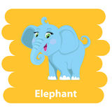 Cartoon  cute Elephant Royalty Free Stock Photos