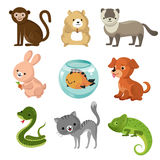 Cartoon cute home pets vector collection stock illustration