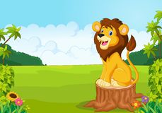 Cartoon cute lion sit on the tree Royalty Free Stock Images