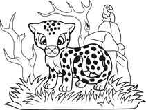 Cute little cheetah, funny illustration, coloring book Stock Photography