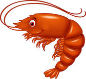 Cartoon cute lobster Stock Images