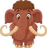 Cartoon cute mammoth Stock Photography