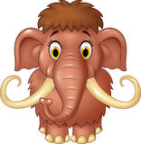 Cartoon cute mammoth  on white background Royalty Free Stock Image