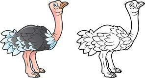 Cute ostrich, funny illustration, coloring book Stock Photo