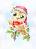 Cartoon cute owl. Funny watercolor illustration. Symbol of new y Stock Photo