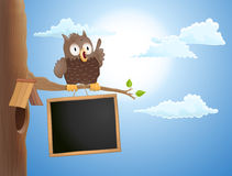 Cartoon cute owl sitting on branch and a chalkboard. vector illu Royalty Free Stock Images