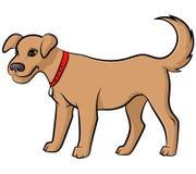 Cartoon cute pale dog Stock Photography