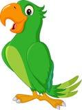 Cartoon cute parrot Stock Photos