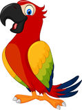 Cartoon cute parrot stock illustration