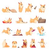 Cartoon Cute Puppy Set. Of different situations including sleep, eating, howl, walking and pranks isolated vector illustration vector illustration