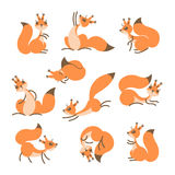 Cartoon cute squirrel. Little funny squirrels. Vector illustration Stock Photography
