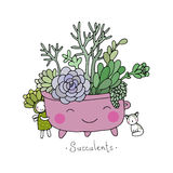 Cartoon cute succulents in pot. Royalty Free Stock Photography