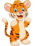Cartoon cute tiger Royalty Free Stock Image