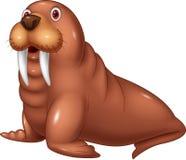 Cartoon cute walrus Stock Images