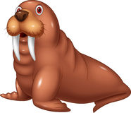 Cartoon cute walrus vector illustration