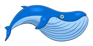 Cartoon cute whale. Isolated on white background vector illustration