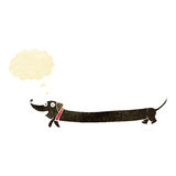 cartoon dachshund with thought bubble Stock Image