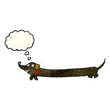 cartoon dachshund with thought bubble Royalty Free Stock Images