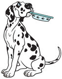 Cartoon dalmatian Royalty Free Stock Image