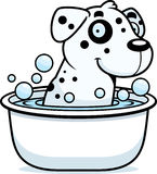 Cartoon Dalmatian Bath Stock Photo