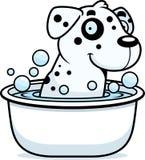 Cartoon Dalmatian Bath Stock Photo