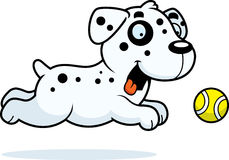 Cartoon Dalmatian Chasing Ball Royalty Free Stock Images