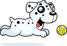 Cartoon Dalmatian Chasing Ball Royalty Free Stock Images
