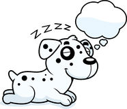 Cartoon Dalmatian Dreaming Royalty Free Stock Images