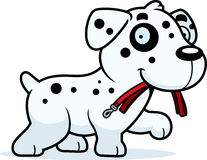 Cartoon Dalmatian Leash Stock Image