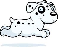 Cartoon Dalmatian Running Royalty Free Stock Photos