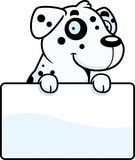 Cartoon Dalmatian Sign Royalty Free Stock Images