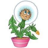 Cartoon dandelion flower royalty free stock images