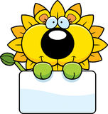 Cartoon Dandelion Lion Sign Royalty Free Stock Photo