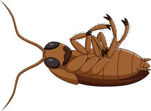 Cartoon dead cockroach Royalty Free Stock Images