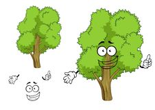 Cartoon deciduous green tree character. With joyful face, showing upward. Isolated on white background stock illustration