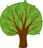 Cartoon deciduous tree. Isolated. Illustration of a cartoon deciduous tree with light and dark green leaves, brown trunk and branches. Isolated stock illustration