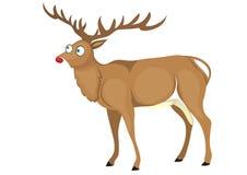 Cartoon deer. Stock Photos
