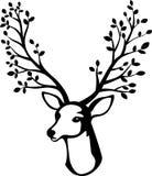 Cartoon Deer head with tree branch horn Royalty Free Stock Photo