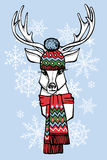 Cartoon deer in Jacquard hat,scarf.Winter fashion Stock Photography