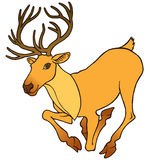 Cartoon deer with large antlers Royalty Free Stock Photography