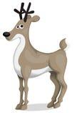 Cartoon deer Royalty Free Stock Photo