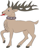 Cartoon deer on white background Royalty Free Stock Images