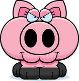 Cartoon Devious Pig Royalty Free Stock Photo