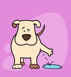 Cartoon dog. Illustration on a  background for a design Royalty Free Stock Image