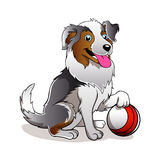 Cartoon Dog with ball. Vector illustration of Cartoon Dog with ball Stock Photos