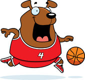Cartoon Dog Basketball Royalty Free Stock Images