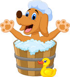 Cartoon Dog bathing time Stock Photography