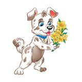 Cartoon dog with  bouqet of flowers Stock Image
