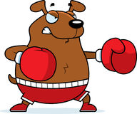 Cartoon Dog Boxing Stock Photo