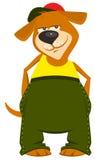 Cartoon dog boy in clothes Royalty Free Stock Photo